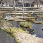 「集いの館」前に広がる棚田の風景