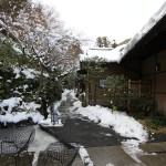 敷地内に客室が点在するのは軽井沢と同じ
